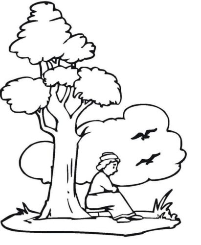 Man Sitting Under The Tree
