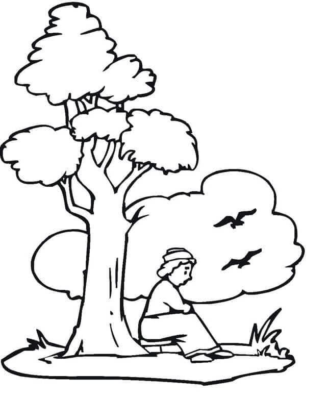Man Sitting Under The Tree