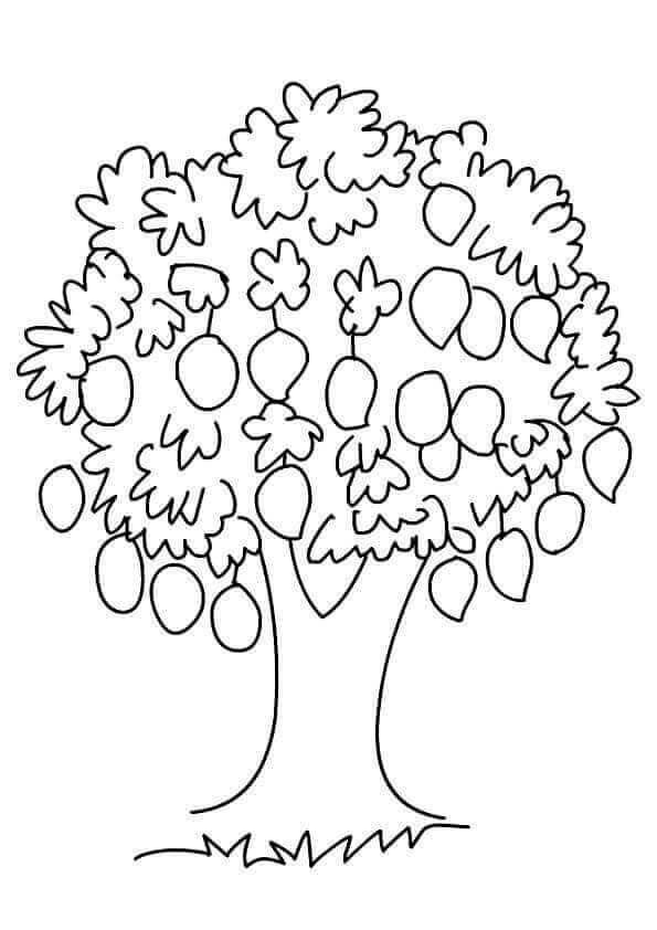 Mango Tree Coloring Page