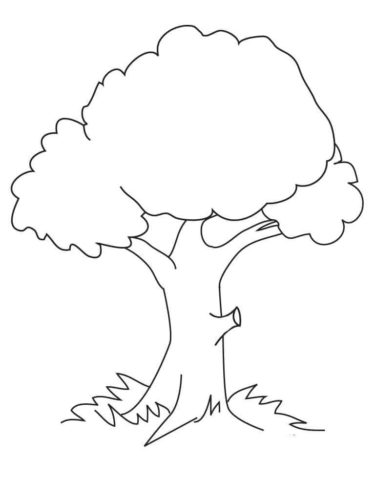 Tree Coloring Pages for Preschoolers