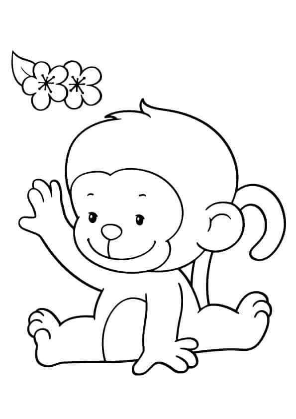 Cute Baby Monkey Colorirng Page