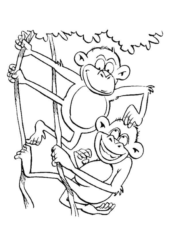 Funny Monkey Coloring Page