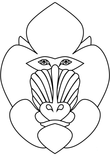 Mandrill Coloring Pages