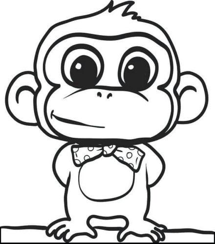 Monkey Wearing A Bow Tie