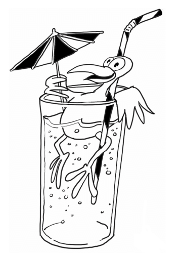 Bird Enjoying A Drink