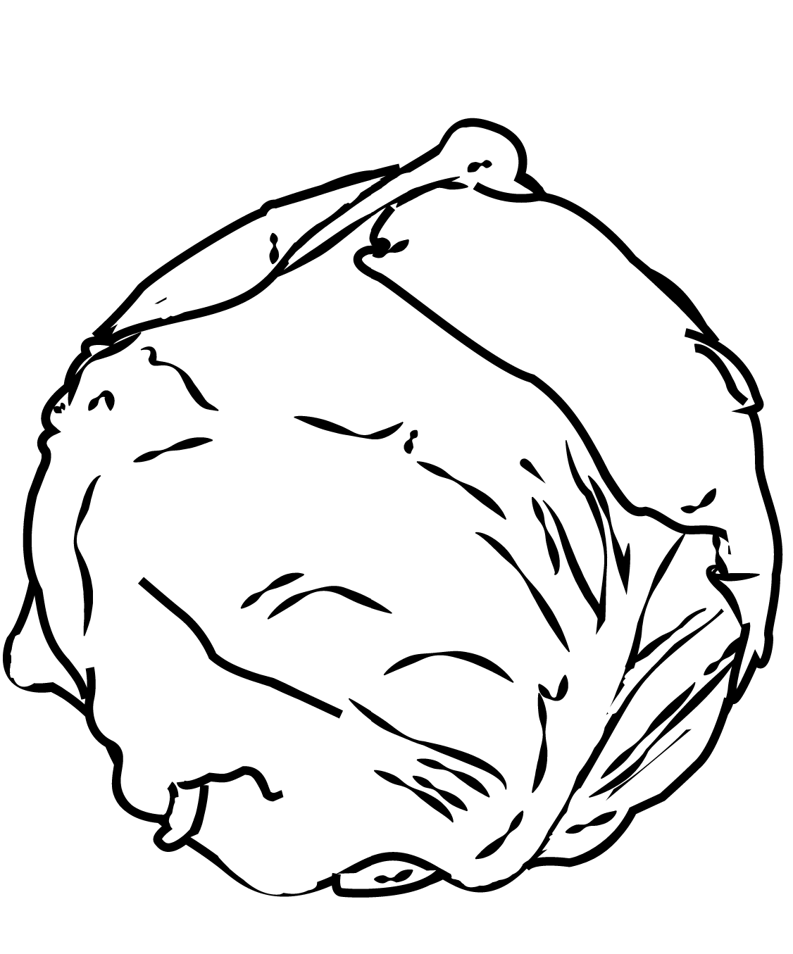 Cabbage coloring page
