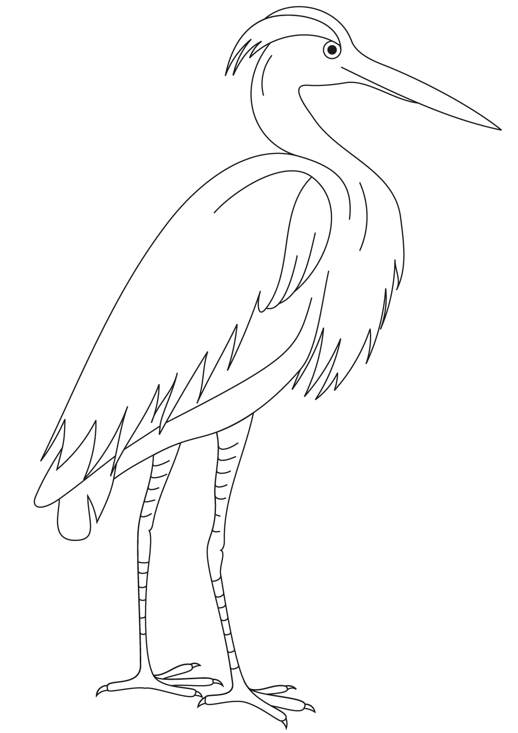 Egret coloring page