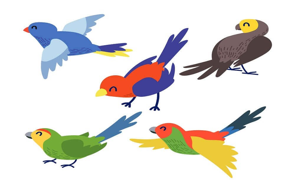 40 Birds Coloring Pages Printable