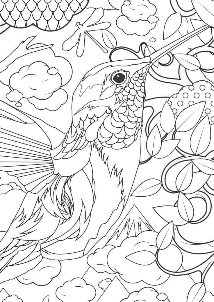 Hummingbird coloring in
