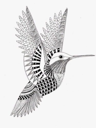 Hummingbird coloring page for adults