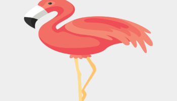 30 Free Flamingo Coloring Pages Printable