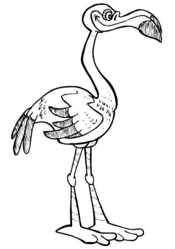 Flamingo looks angry