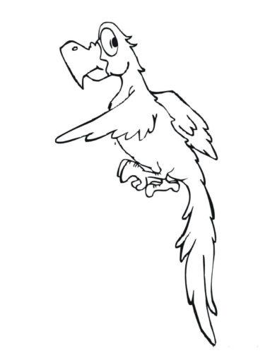 Cartoon Parakeet coloring page