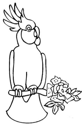 Cockatoo coloring page