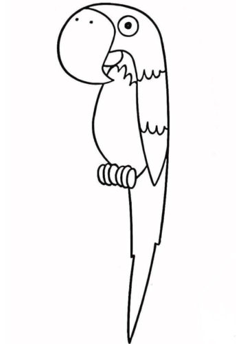 Parrot coloring pages for preschoolers