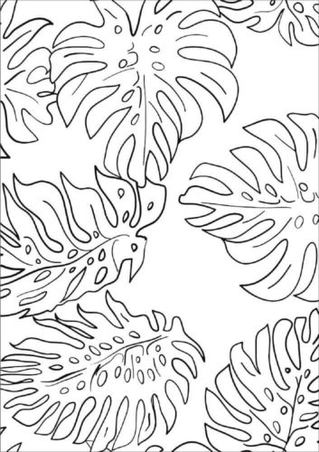 Monstera Leaves coloring page