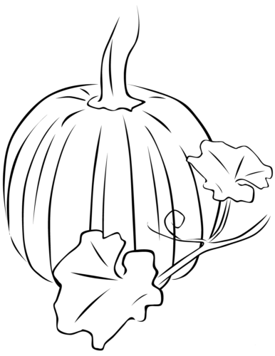 Pumpkin with its leaves