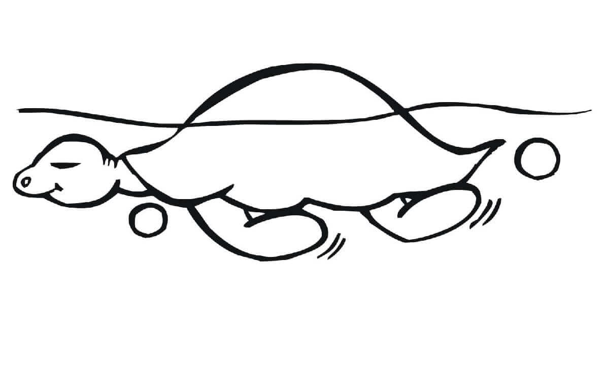 Calm turtle coloring page