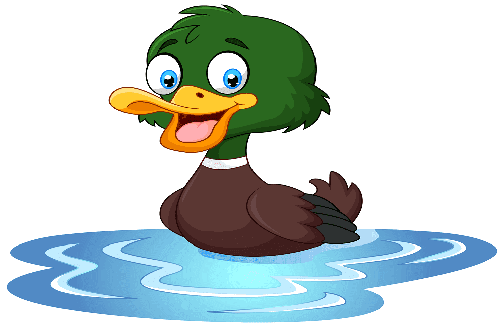 Duck coloring