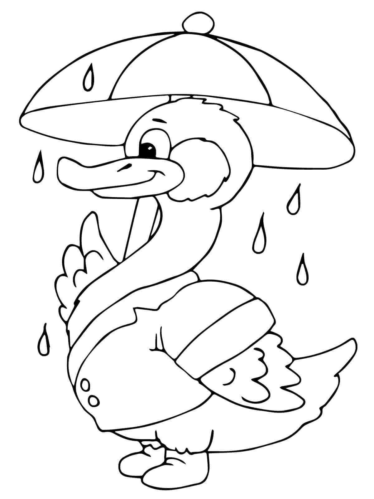 Duck with an umbrella