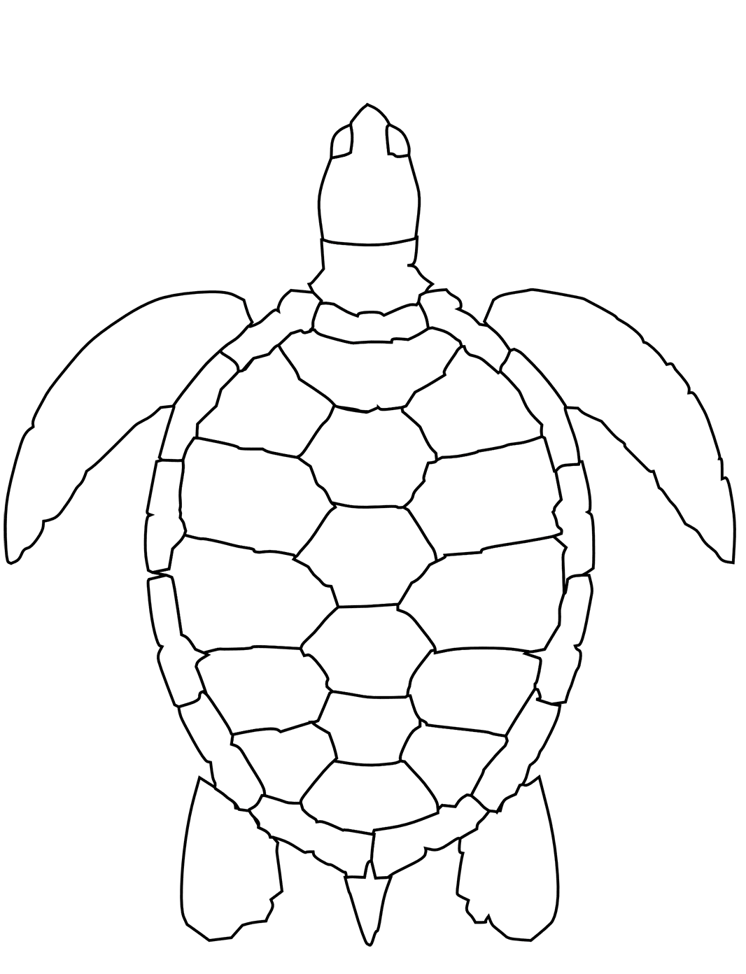Swimming turtle coloring page