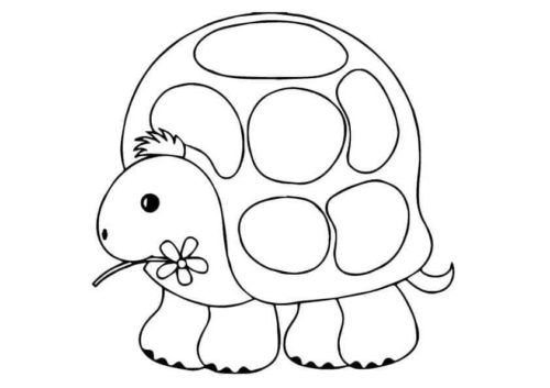Turtle carrying a flower
