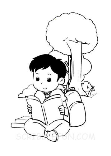 Boy reading in school field