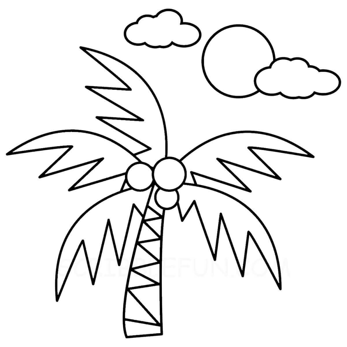 Coconut tree and sun
